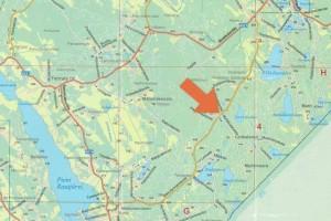 Metsätila 20,45 ha